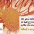 Vibrance-23Sept2014-620x330
